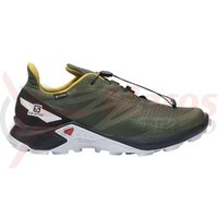 Pantofi alergare barbati Salomon Supercross BLAST GTX Olive Night/Black