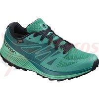 Pantofi alergare Salomon Sense Escape Gore-Tex tropic gr/atla verde femei