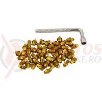 Pini pedale Funn Street M4x4mm plus cheie pentru montare 50 bucati aurii