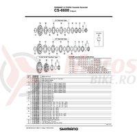 Pinion Shimano Ultegra CS-6600 22-23-25T