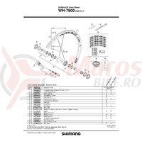 Prelungitor Valva Shimano WH7900-C35