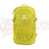 Rucsac drumetie Salomon Trailblazer 30 Citronelle/Alloy NS