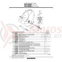 Spita Shimano WH-6600-R Stanga 300mm + Saiba