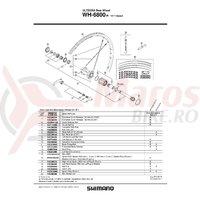 Spita Shimano WH-6800-R Stanga 305mm + Capat & Saiba