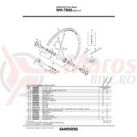 Spita Shimano WH-7900-C24-TL-F 282mm + Capat/Saiba
