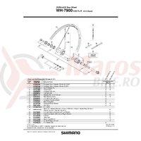 Spita Shimano WH-7900-C24-TL-R 304mm + Capat/Saiba