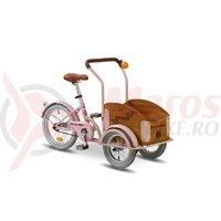 Triciclu Pegas Mini Cargo 1S roz bujor