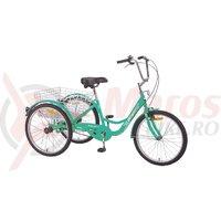 Triciclu Pegas Senior 6v verde mineral