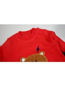 Compleu ursulet rosu