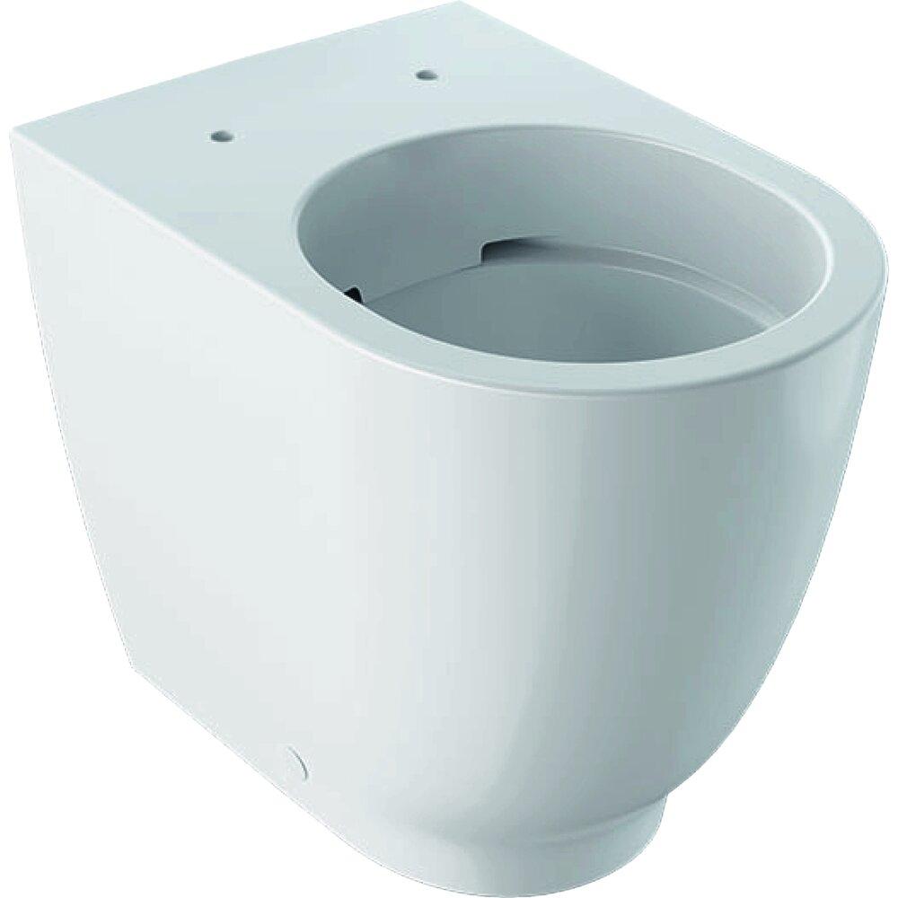 Vas wc suspendat btw Geberit Acanto Rimfree cu spalare verticala alb imagine