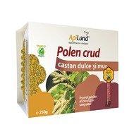 Polen crud castan dulce și mur, 250gr