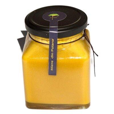 Tonic apicol 400g