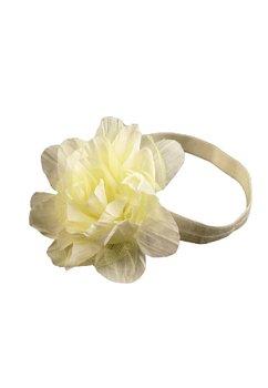 Bentita galbena, cu floare