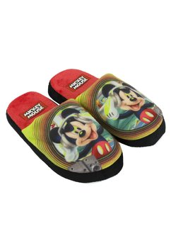 Papuci de casa, Dj Mickey