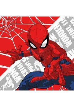 Prosopel magic, Spider-Man, 30x30cm