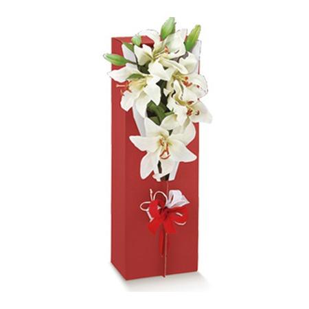 Cutie pentru flori