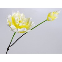 Floare de lotus galben neon