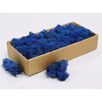 Licheni decorativi albastri