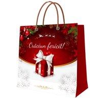 Punga pentru cadouri Craciun M