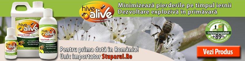 Lansare Hive Alive