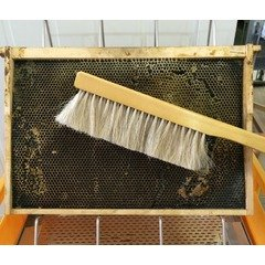 Perie apicola rand triplu